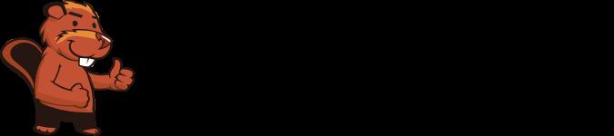 Castor Informatique Suisse