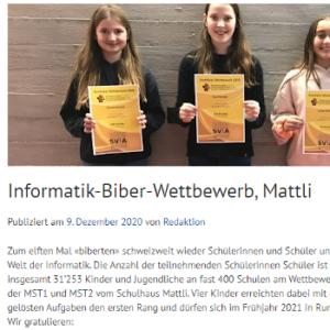 Informatik-Biber-Wettbewerb, Mattli
